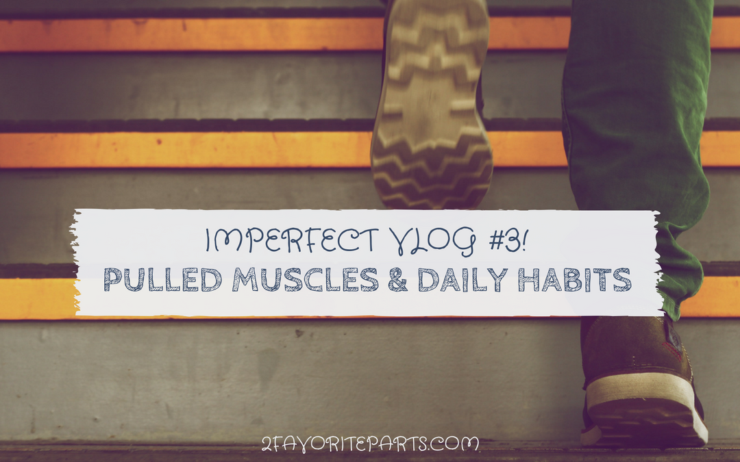 Imperfect Vlog #3! Pulled muscles, Daily Habits For Success, and Obedience Class